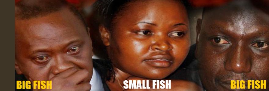 the-big-fish-pac-should-interrogate